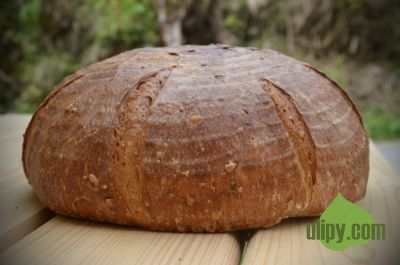 Chléb se záparou ze semínek a dýňové mouky